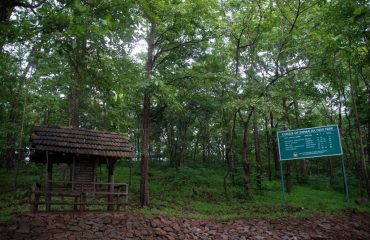 Satmalia Deer Sanctuary forest
