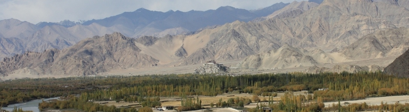 View around Leh